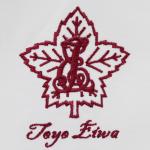 Toyo Eiwa
