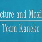 Acupuncture and Moxibustion Team Kaneko