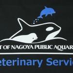 PORT OF NAGOYA PUBLIC AQUARIUM Veterinary Service